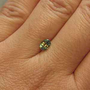 Montana Sapphire Green Yellow Blue .75 carat Cushion cut
