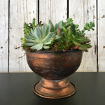 father's day gift ideas gardener succulent garden clovis ca delivery