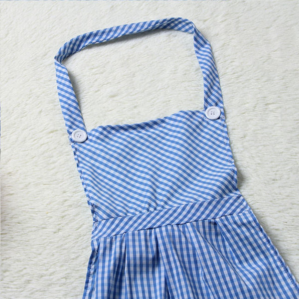 Sexy Cosplay Apron Lattice  Blue Maid Intimate Women Lingerie