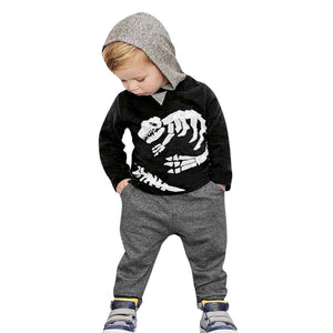 Long Sleeve Dinosaur Hooded Sweatshirt Top Long Pant Sportswear Outfit 2Pcs set