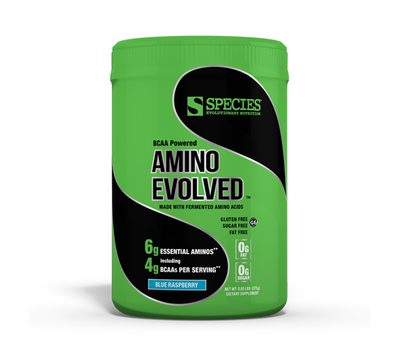 AMINO EVOLVED: FERMENTED BRANCHED CHAIN AMINO ACID
