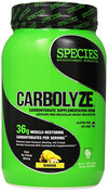 CARBOLYZE: CARBOHYDRATE SUPPLEMENT