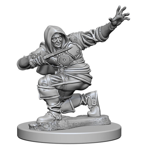 Image of Pathfinder Unpainted Minis Human Male Rogue