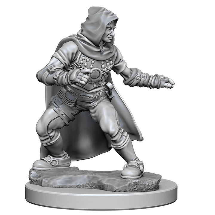Pathfinder Unpainted Minis Human Male Rogue