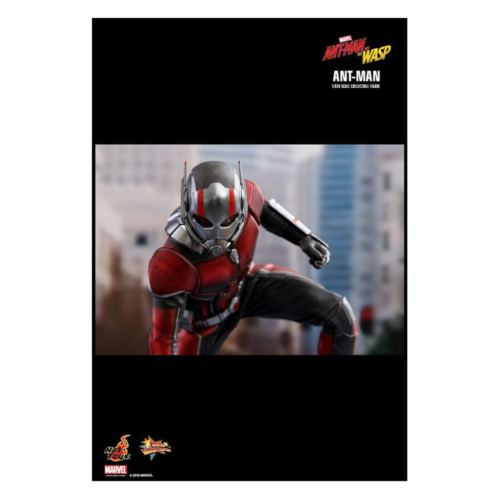 Ant-Man and the Wasp - Ant-Man 1:6 Scale Action Figure
