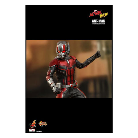 Image of Ant-Man and the Wasp - Ant-Man 1:6 Scale Action Figure
