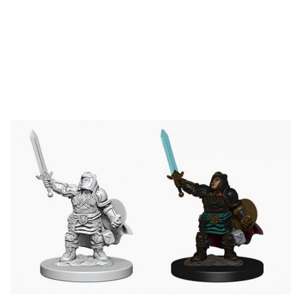 Dungeons And Dragons Unpainted Minis Dwarf Female Paladin