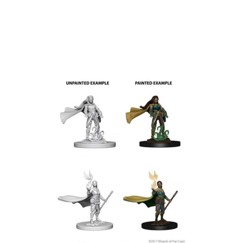 Image of Dungeons And Dragons Unpainted Minis Elf Female Druid