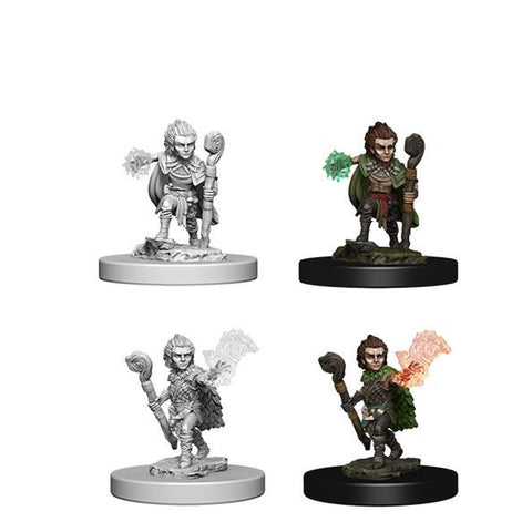 Image of Pathfinder Unpainted Minis Gnome Male Druid