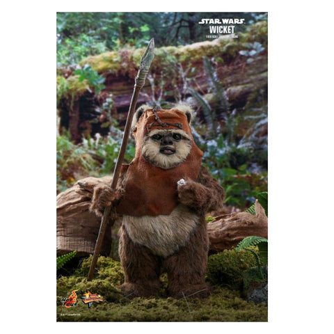 Star Wars - Wicket Return of the Jedi 1:6 Scale Acton Figure