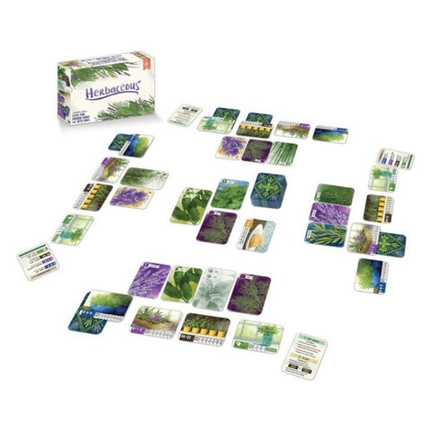 Image of Herbaceous