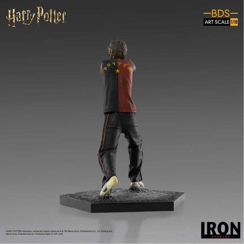 Harry Potter - Harry Potter BDS 1:10 Scale Statue