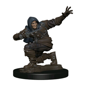 Pathfinder - Human Rogue Male Premium Figure