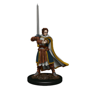 Dungeons & Dragons - Premium Human Fighter Male Miniature