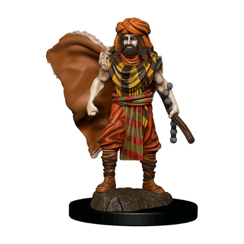 Dungeons & Dragons - Premium Human Druid Male Miniature