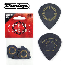 Load image into Gallery viewer, Jim Dunlop AALP04 Animals As Leaders Javier Reyes Tortex Jazz III XL Guitar Picks (6pcs) | Reco Music Malaysia