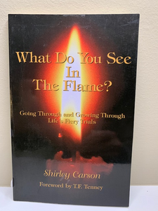 What do You See in the Flame? by Shirley Carson