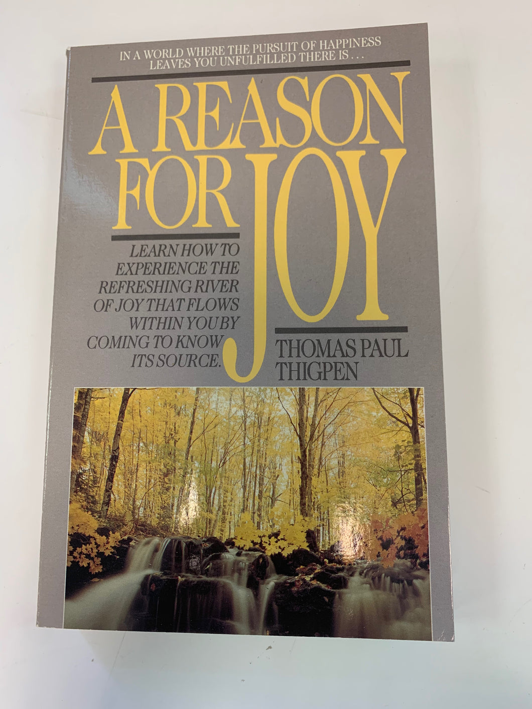 A Reason for Joy by Thomas Paul Thigpen