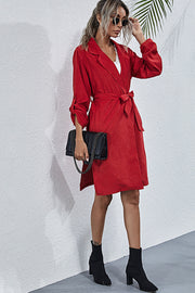 Long-Sleeved Lapel Tie Dress