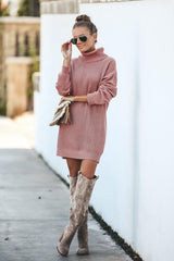 Medium Long High Collar Sweater Dress - Pavacat