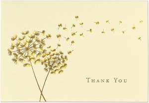 BOXED THANK YOU CARDS DANDELION WISHES