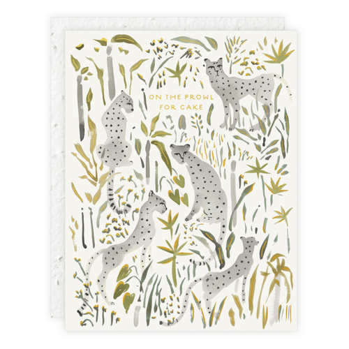 CARD SEEDLINGS GREY CHEETAHS