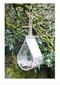 BIRD FEEDER WINDOW DEWDROP