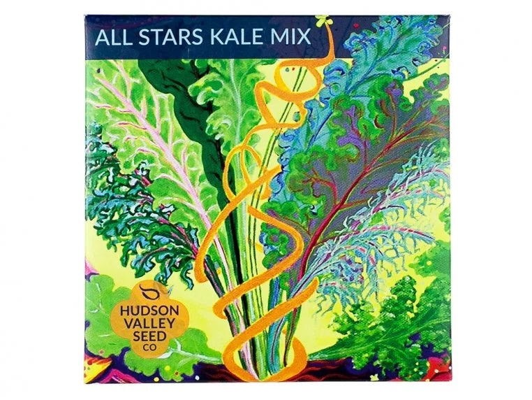 SEED PACKET ALL STARS KALE MIX