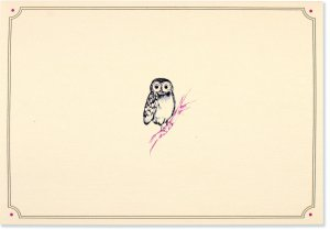 BOXED NOTECARDS OWL PORTRAIT
