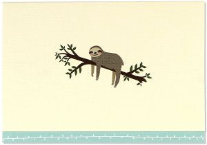 BOXED NOTECARDS SLOTH