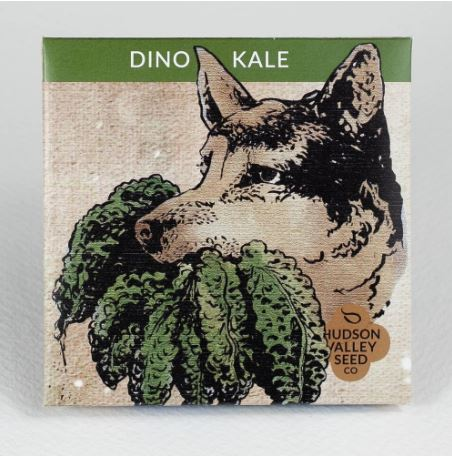 SEED PACKET DINO KALE