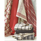 RED CANYON WOVEN TEA TOWELS (SET OF 4)