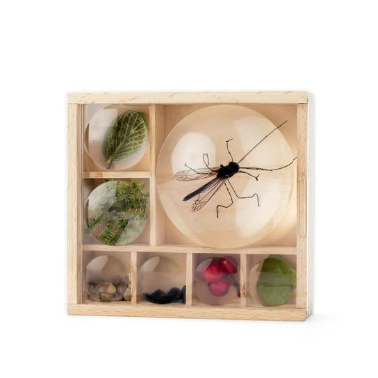 BUG BOX W/ MAGNIFIERS