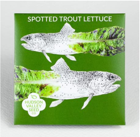 SEED PACKET SPOTTED TROUT LETTUCE