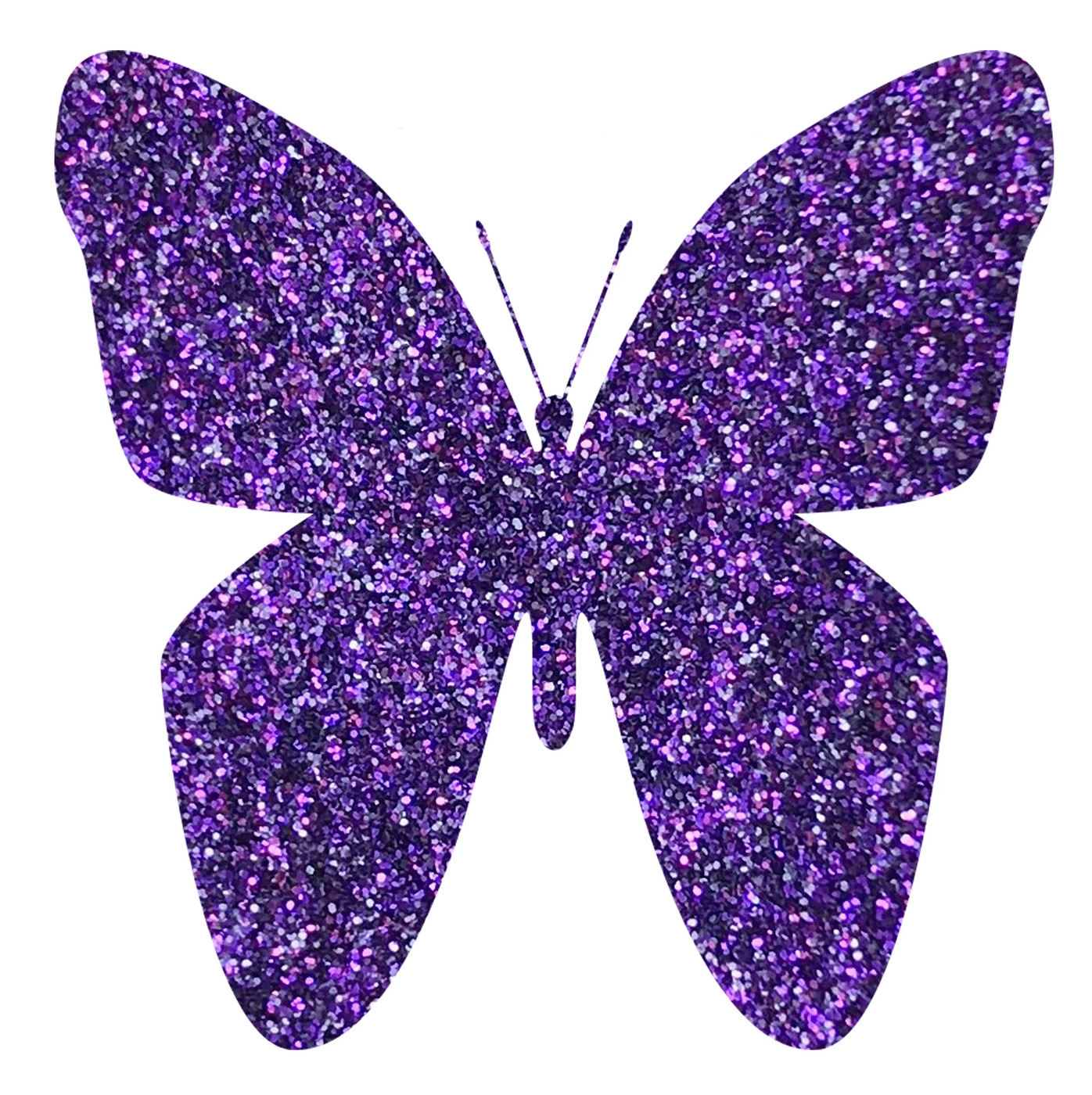 Ultrafine Glitter Impulsive Purple G1069