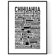 Chihuahua Poster