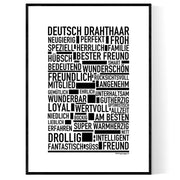 Deutsch Drahthaar Poster