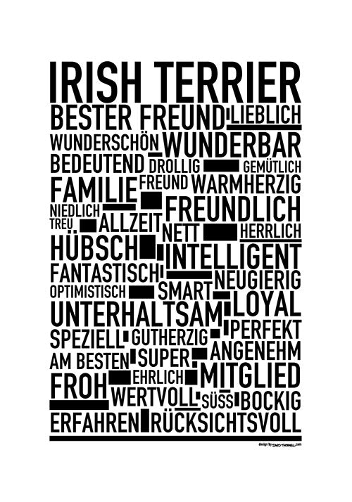 Irish Terrier Poster