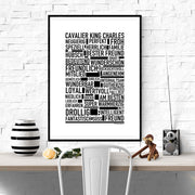 Cavalier King Charles Poster