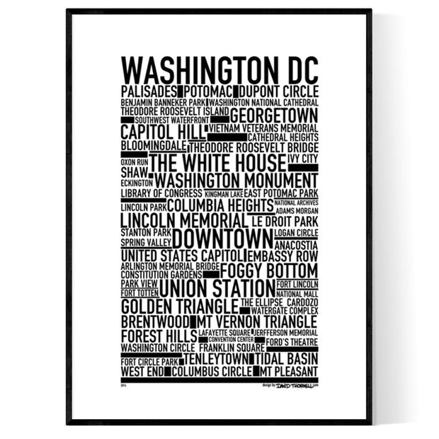 Washington D.C Poster