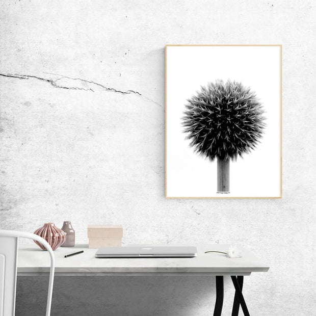 Ball Plant Poster