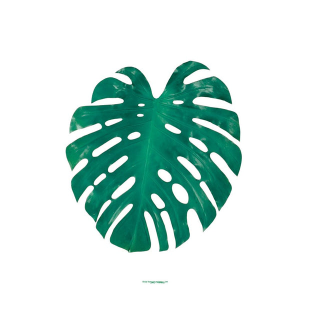 Green Monstera Poster