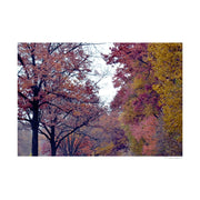 Virginia Autumn Poster