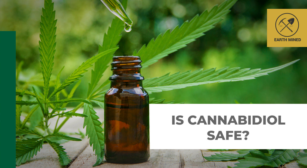 Is Cannabidiol CBD Safe