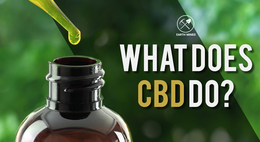 What Exactly Does CBD Do?