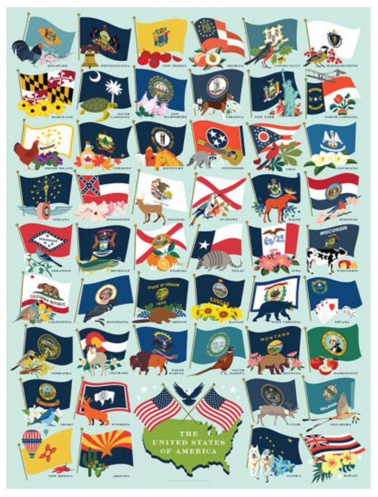 State Flags True South puzzle