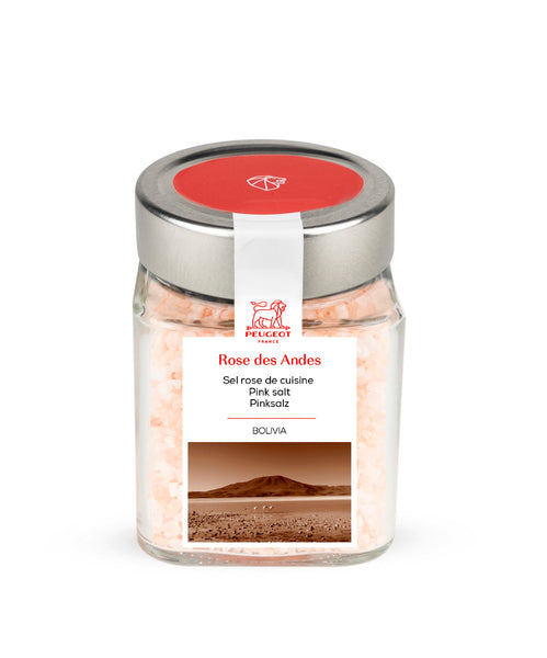 Peugeot Spice Cube Andean Pink Salt from Bolivia 350 gr / 12.3 oz.
