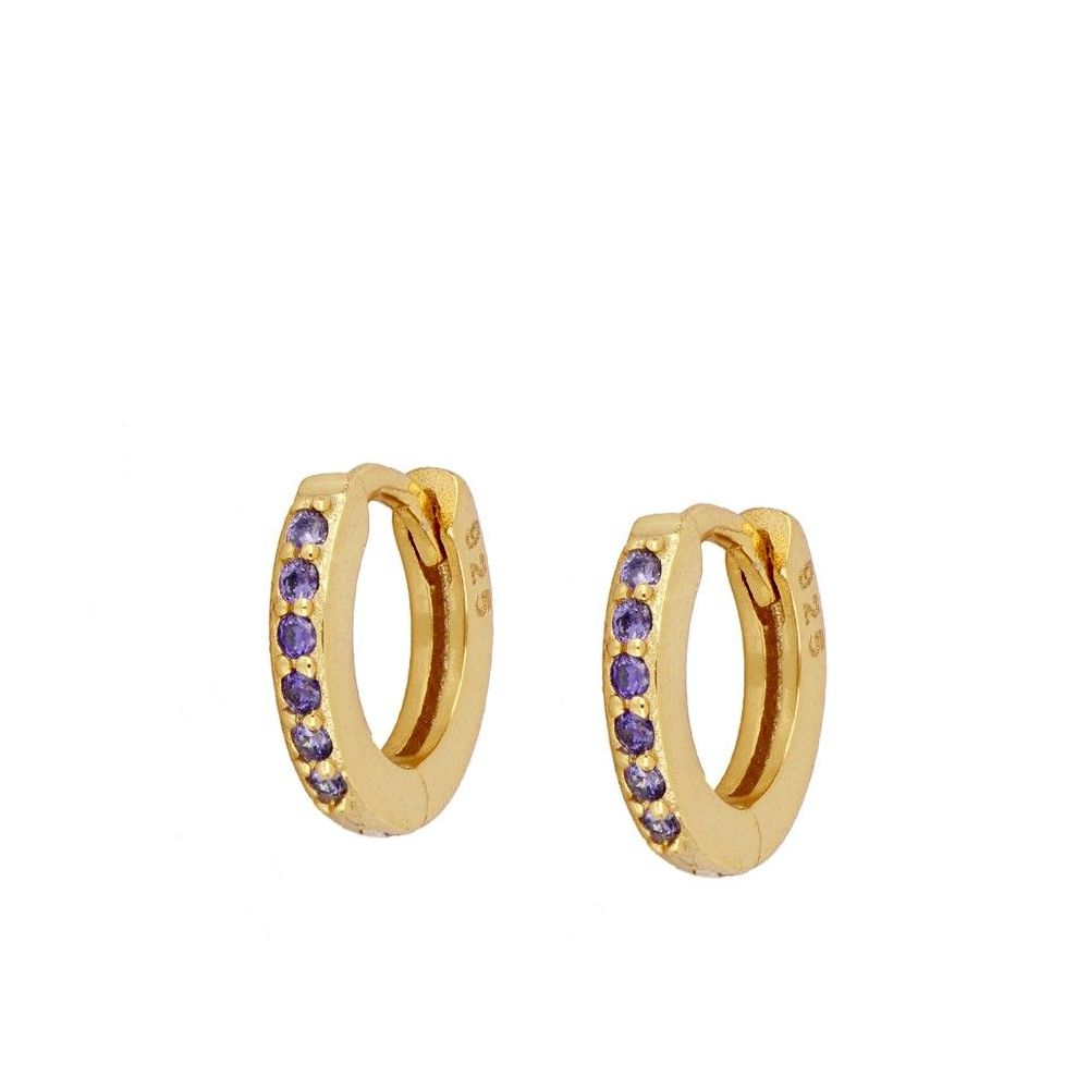 Secret Violet Gold Earrings