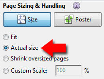 screenshot using actual size in print options
