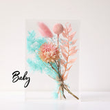 Baby Dried Flower Box